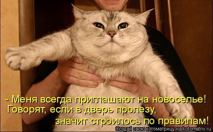 http://s6.uploads.ru/Iqwx3.jpg