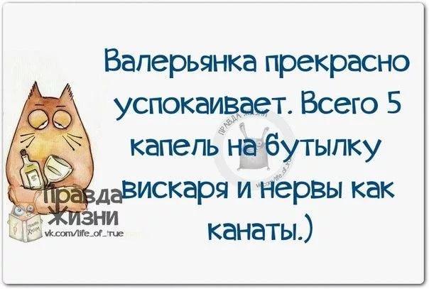 http://s6.uploads.ru/QMPnl.jpg