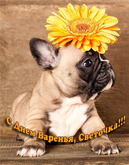 http://s6.uploads.ru/dF5O8.jpg