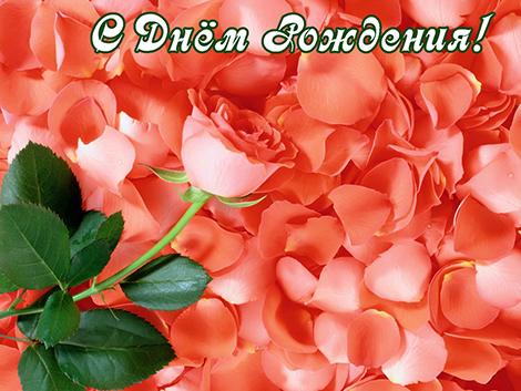 http://s6.uploads.ru/hD3lz.jpg