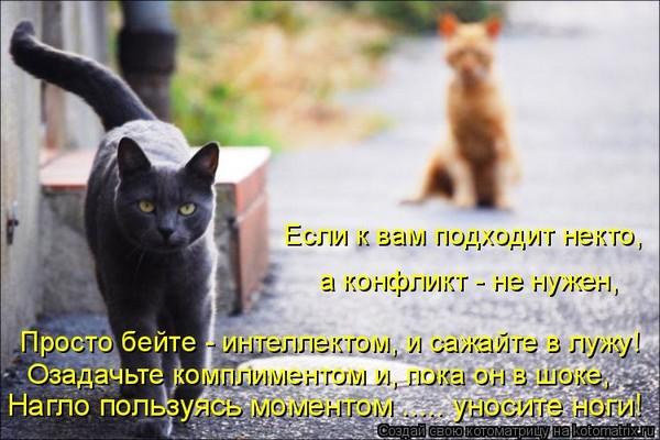 http://s6.uploads.ru/hQH8X.jpg