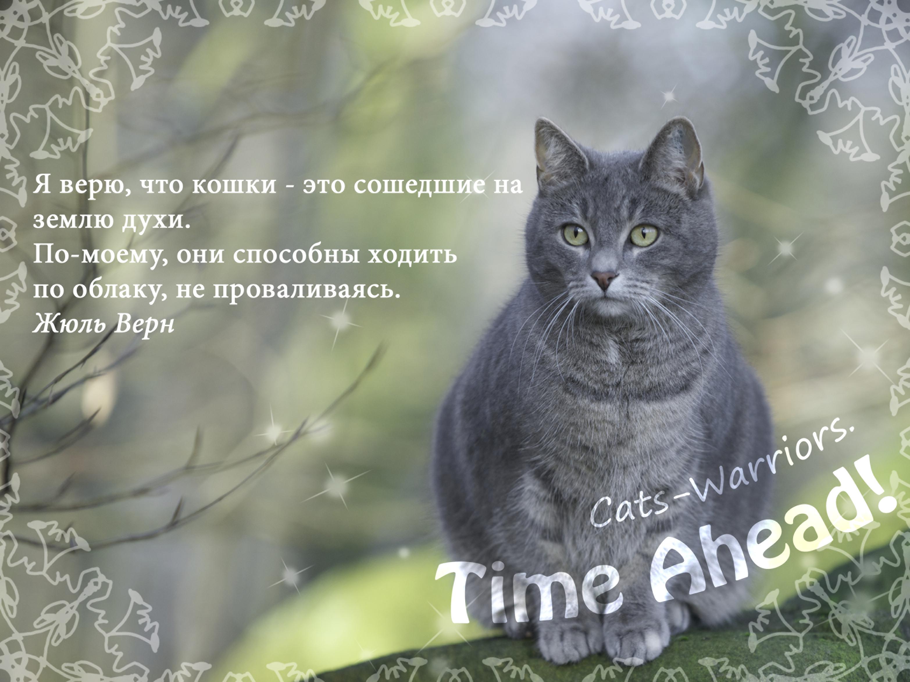 http://s6.uploads.ru/lP72v.png
