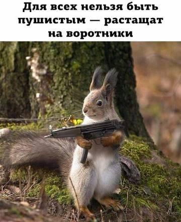 http://s6.uploads.ru/t/3om6f.jpg