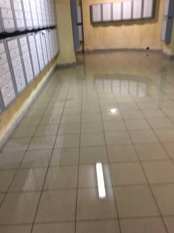 Потоп и плесень в подвале!