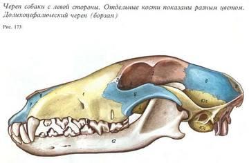 http://s6.uploads.ru/t/JMfXx.jpg