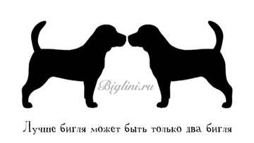 http://s6.uploads.ru/t/RXU7c.jpg