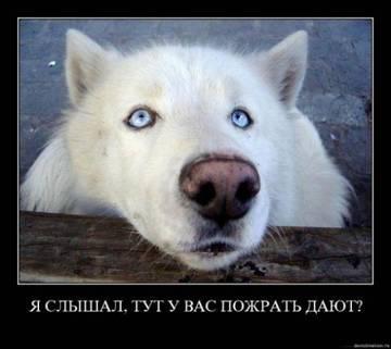 http://s6.uploads.ru/t/axTst.jpg