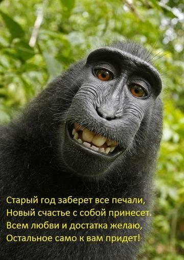 http://s6.uploads.ru/t/yComj.jpg