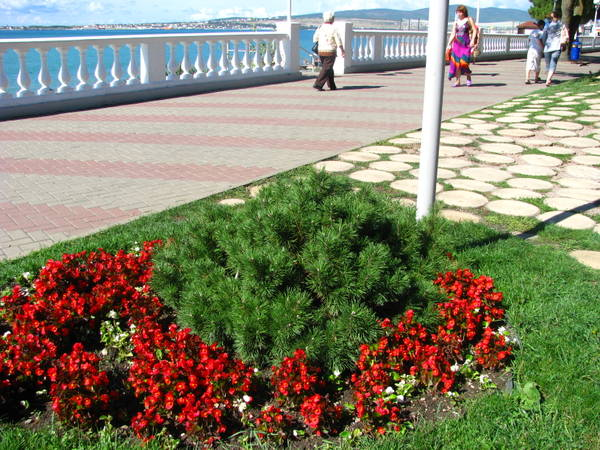 http://s6.uploads.ru/t/zuU9l.jpg