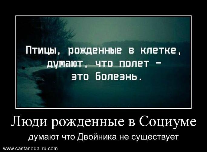 http://s6.uploads.ru/zqVuD.jpg